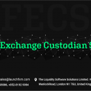 Foreign Exchange Custodian Services