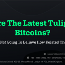 Are The Latest Tulips Bitcoins? You're Not Going To Believe How Related They Are!