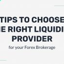 Tips to Choose the right Liquidity Provider for your Forex Brokerage