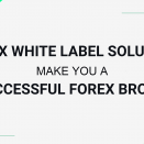Forex white label solutions make you a successful forex broker