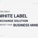 How can a white label exchange solution boost your business mind?
