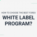 How to choose the best forex white label program?